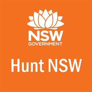 Hunt NSW